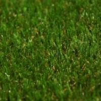 nurteks toptan çim halı